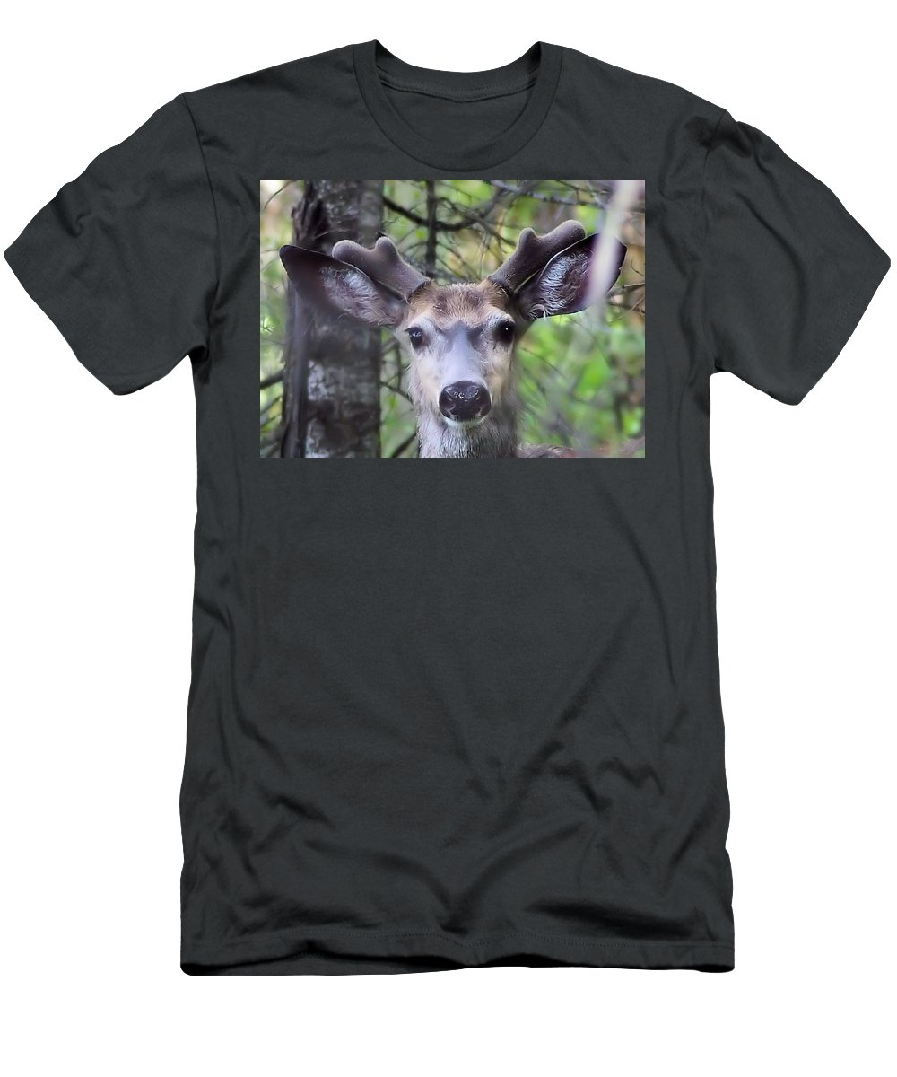 Wildlife Men's T-Shirt (Athletic Fit) featuring the photograph Hello by Jeff Swan