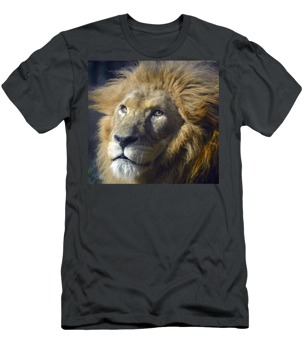 Lion King Men's T-Shirt (Athletic Fit) featuring the photograph Lion by Savannah Gibbs