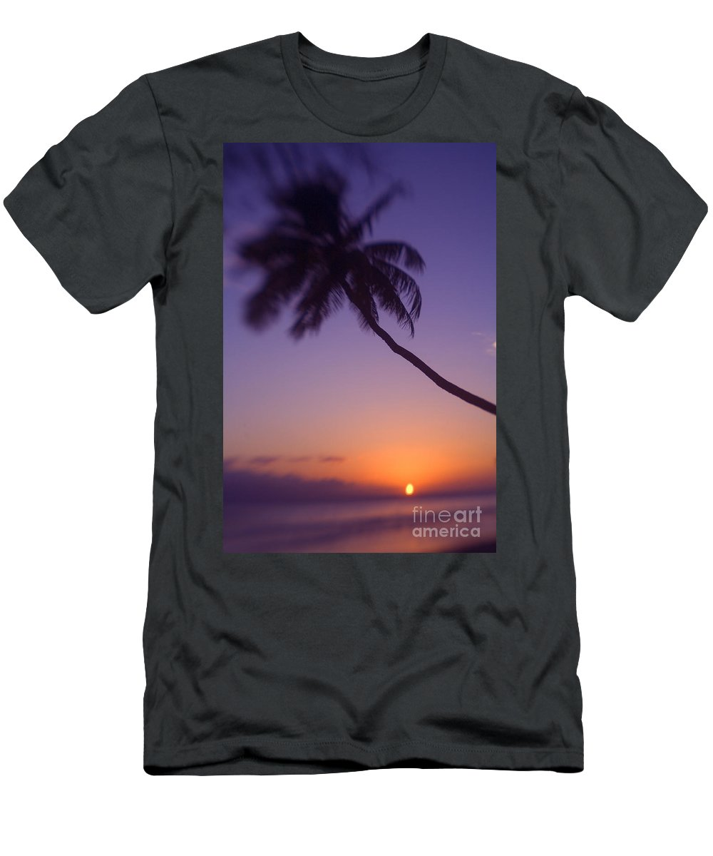 Beach Men's T-Shirt (Athletic Fit) featuring the photograph Palm Over The Beach by Ron Dahlquist - Printscapes