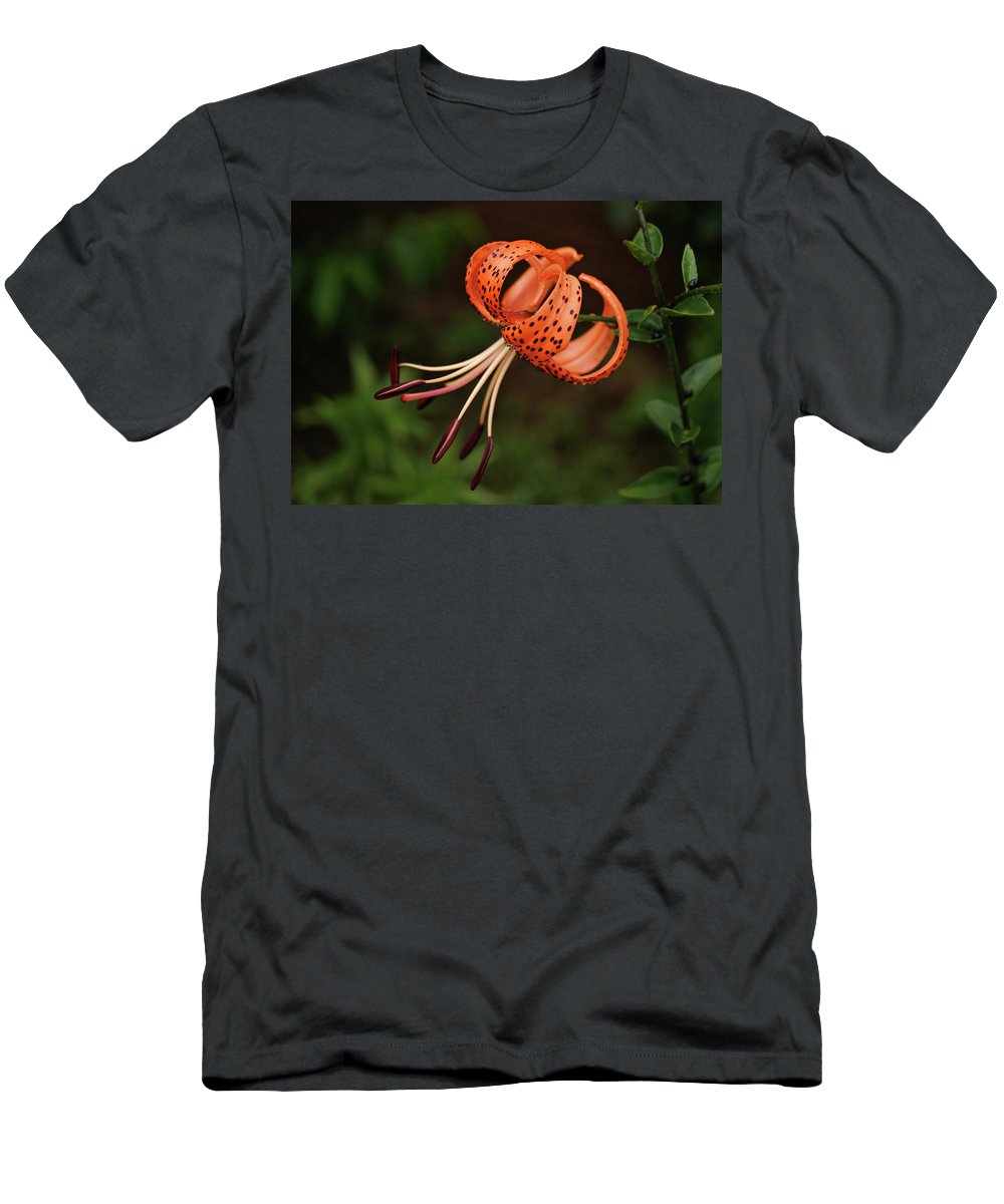 Lily Men's T-Shirt (Athletic Fit) featuring the photograph Tiger Lily by Sandy Keeton