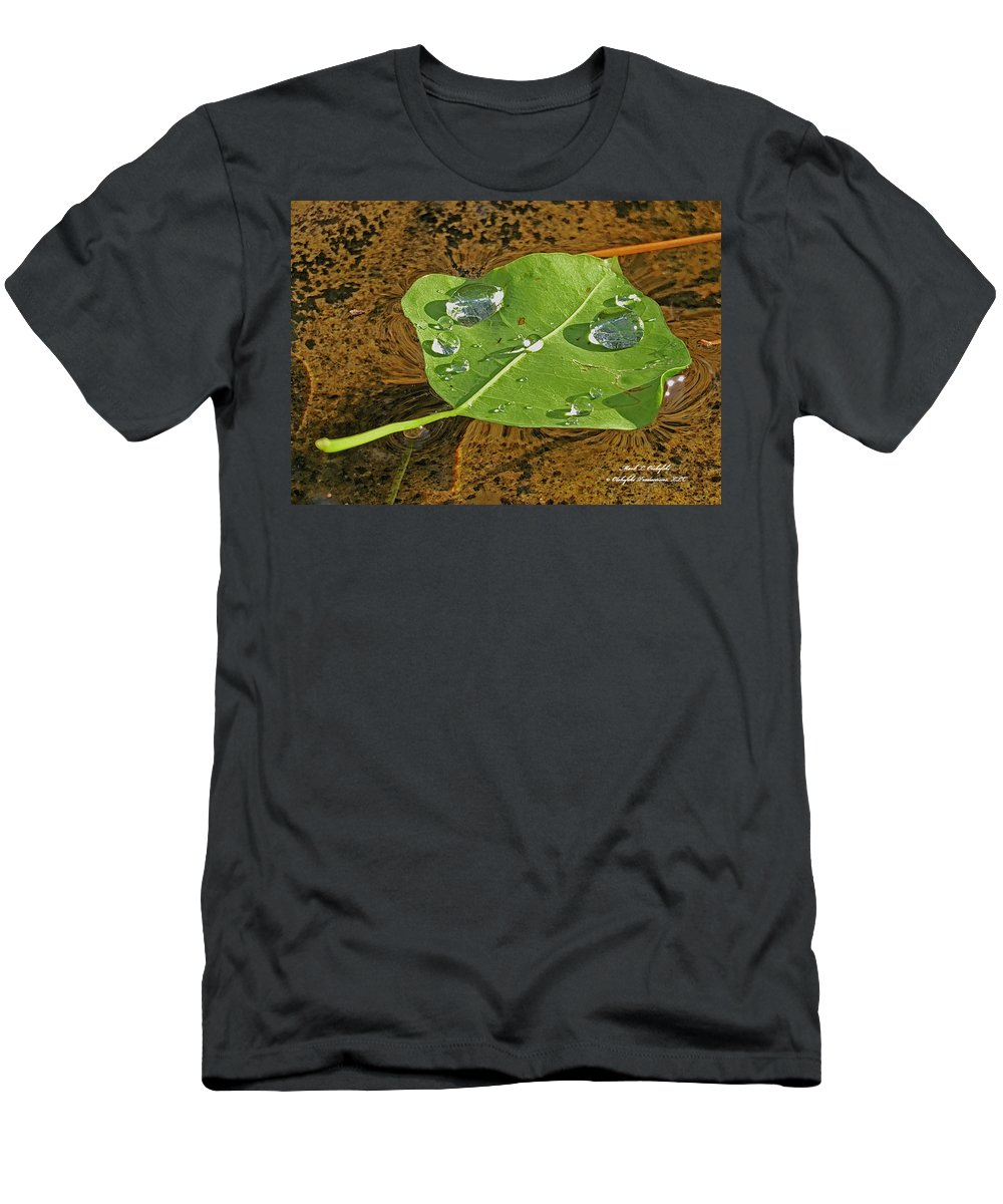 Leaf Men's T-Shirt (Athletic Fit) featuring the photograph 2018 08 31 Sign H2o Leaf Img_5999 by Mark Olshefski
