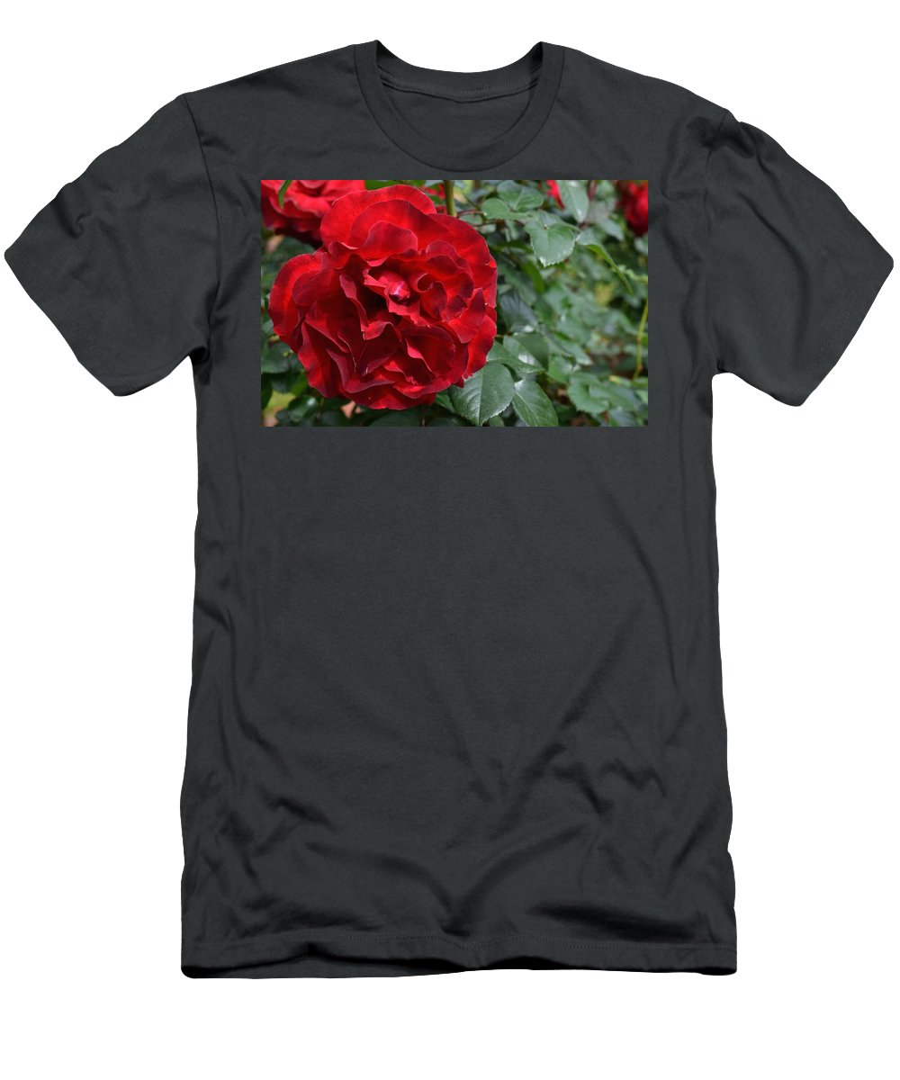 Flower Men's T-Shirt (Athletic Fit) featuring the photograph Rose by FL collection