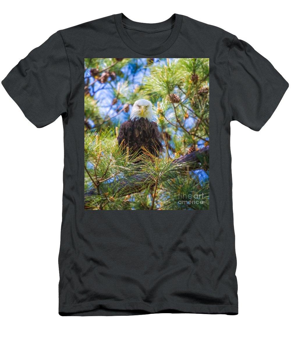 Bald Eagle Men's T-Shirt (Athletic Fit) featuring the photograph Bald Eagle by Warrena J Barnerd