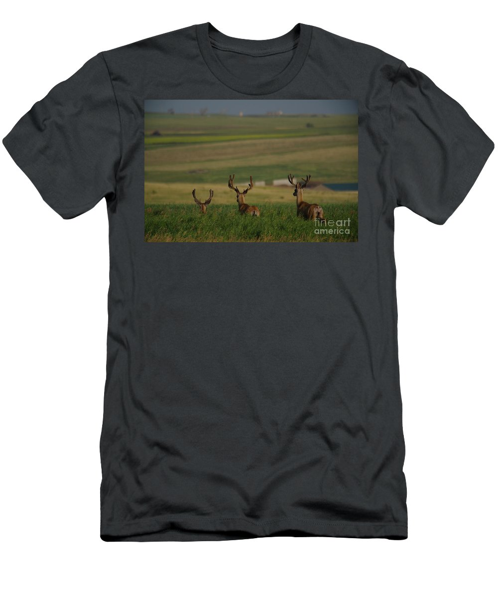 Dear Men's T-Shirt (Athletic Fit) featuring the photograph 3 Bucks Bounding Away by Jeff Swan