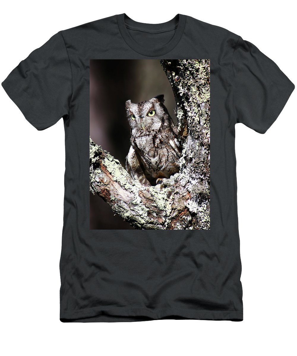 Screech Owl Men's T-Shirt (Athletic Fit) featuring the photograph Screech Owl by SC Shank