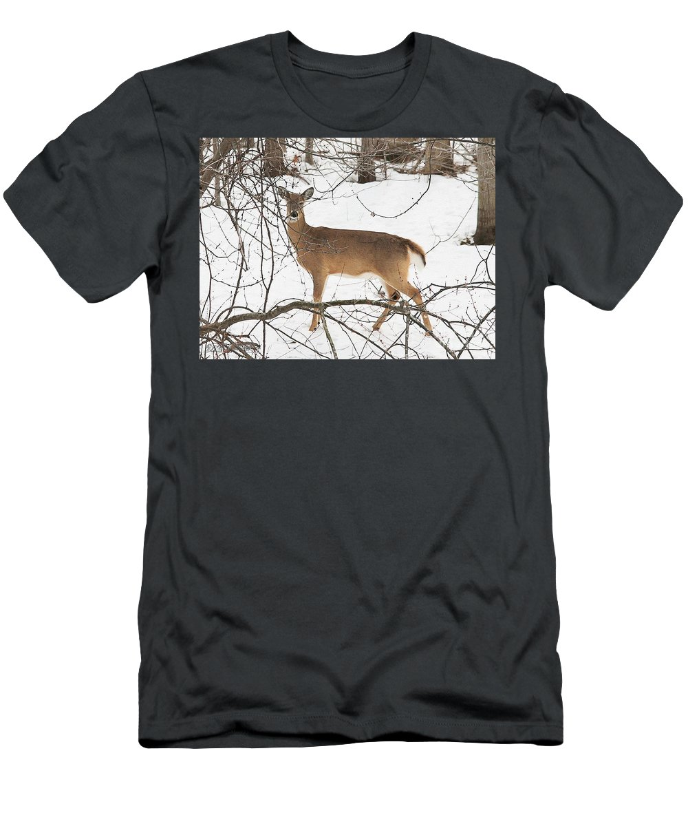 Mccombie Men's T-Shirt (Athletic Fit) featuring the painting White-tailed Deer by J McCombie