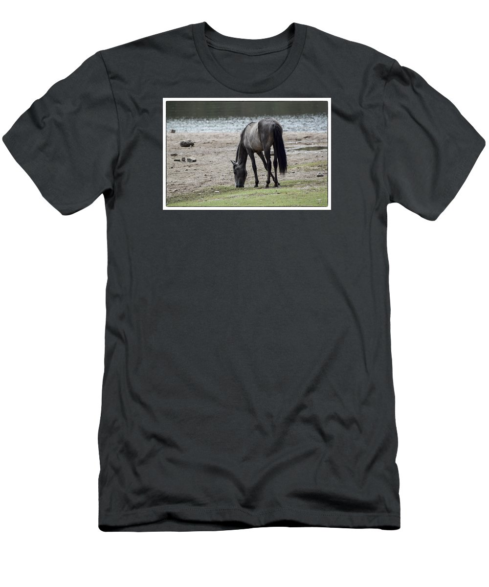 Horse Men's T-Shirt (Athletic Fit) featuring the photograph Wild Mustangs by Marit Runyon