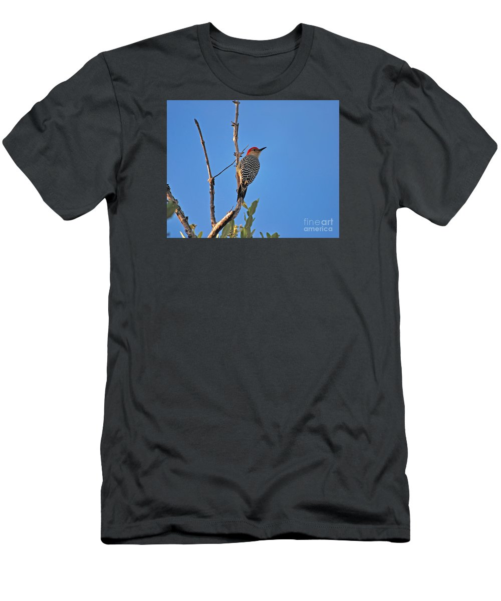 Red-bellied Woodpecker Men's T-Shirt (Athletic Fit) featuring the photograph 62- Red-bellied Woodpecker by Joseph Keane
