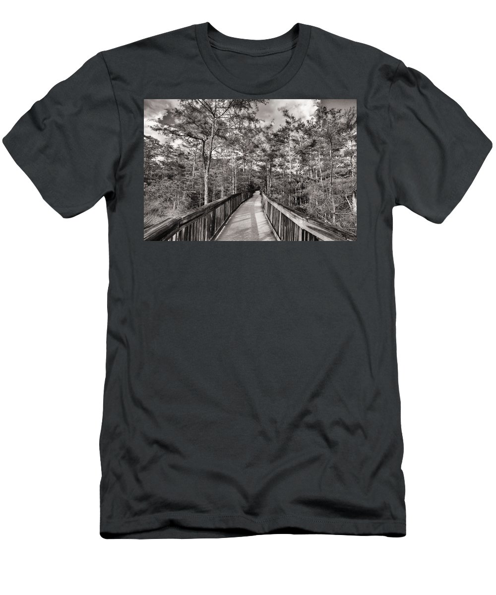 Everglades Men's T-Shirt (Athletic Fit) featuring the photograph Florida Everglades by Raul Rodriguez