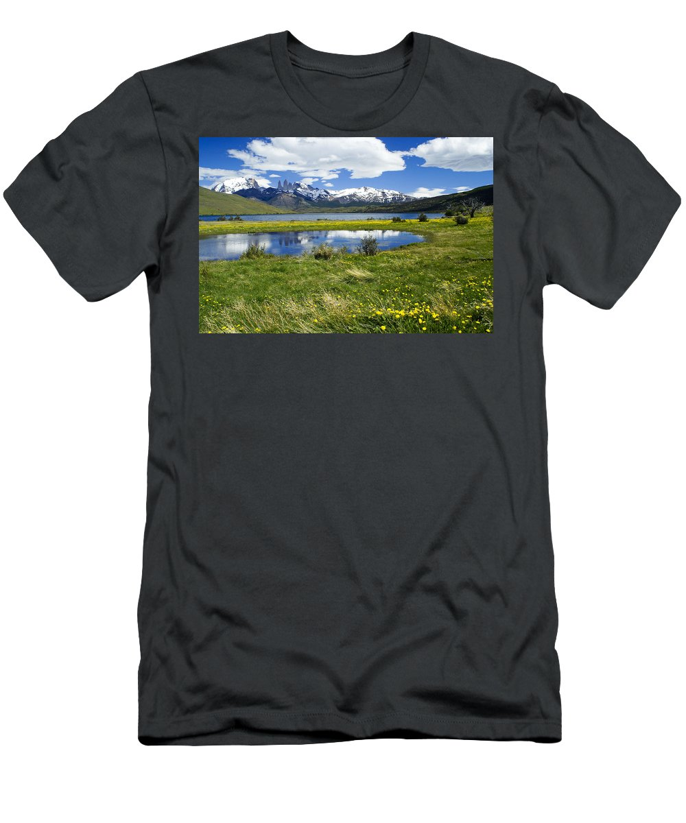 Patagonia T-Shirt featuring the photograph Springtime in Torres del Paine by Michele Burgess