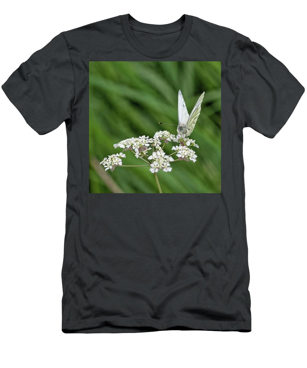 Insectsofinstagram T-Shirt featuring the photograph A Green-veined White (pieris Napi) by John Edwards