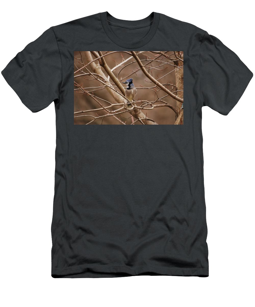 Bluejay Men's T-Shirt (Athletic Fit) featuring the photograph A Touch Of Blue by Lori Tambakis