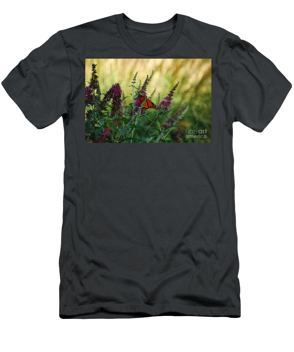 Monarch Men's T-Shirt (Athletic Fit) featuring the photograph A Touch Of Orange by Lori Tambakis