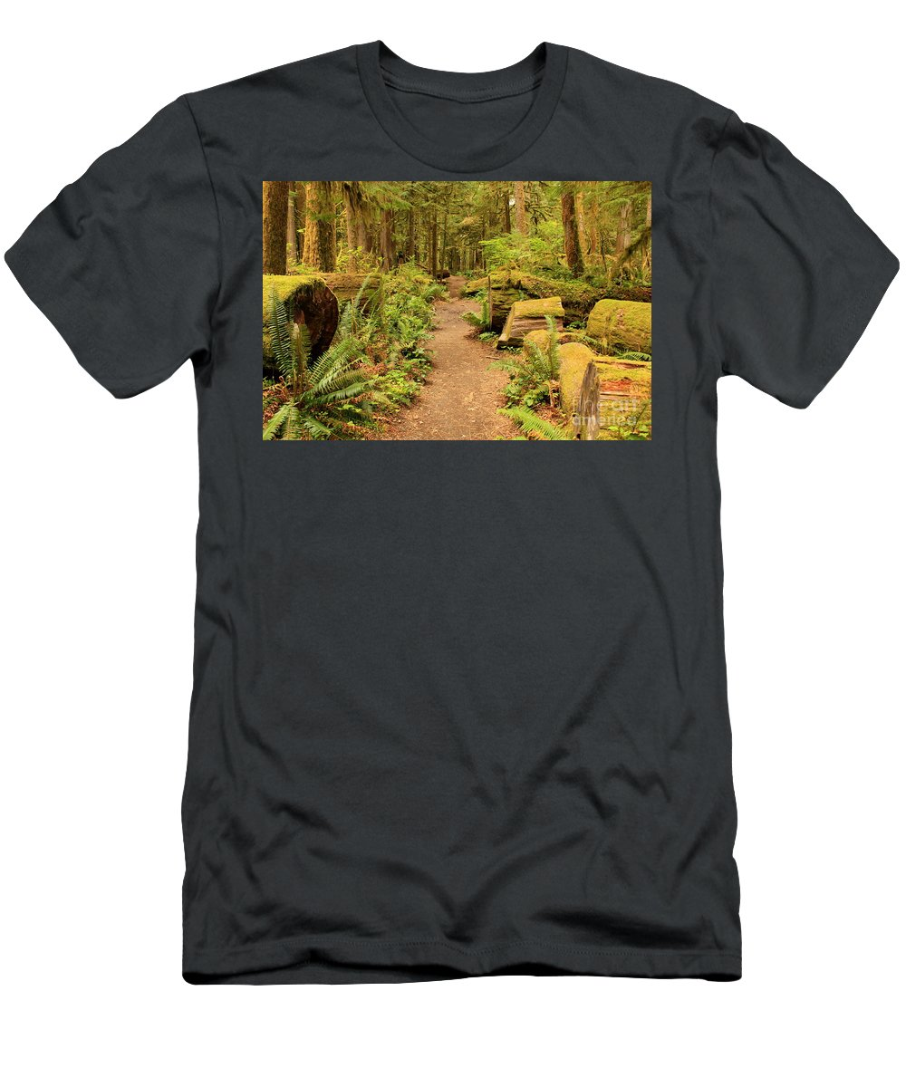 Landscape Men's T-Shirt (Athletic Fit) featuring the photograph A Walk Through The Rainforest by Carol Groenen