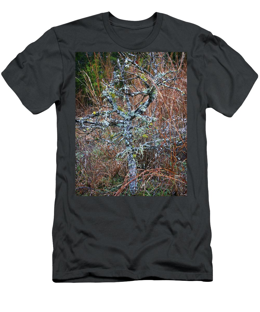 Abstract Men's T-Shirt (Athletic Fit) featuring the photograph Abstract And Lichen by Marilyn Hunt