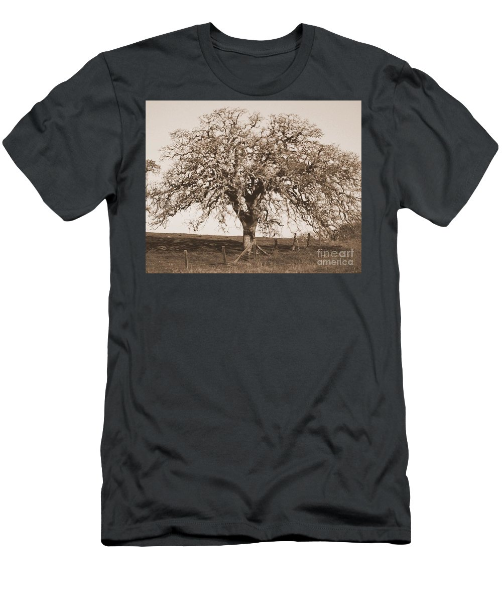 Tree Men's T-Shirt (Athletic Fit) featuring the photograph Acacia Tree In Sepia by Carol Groenen