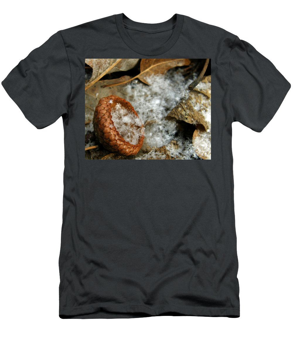 Acorn Men's T-Shirt (Athletic Fit) featuring the photograph Acorn Cap Filled With Snow by Kimberly Mohlenhoff
