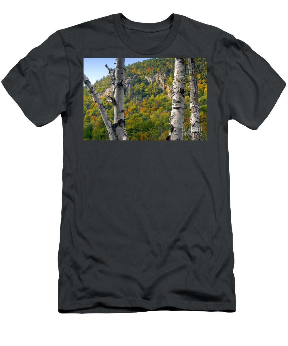 Adirondack Mountains New York Men's T-Shirt (Athletic Fit) featuring the photograph Adirondack Mountains New York by David Lee Thompson