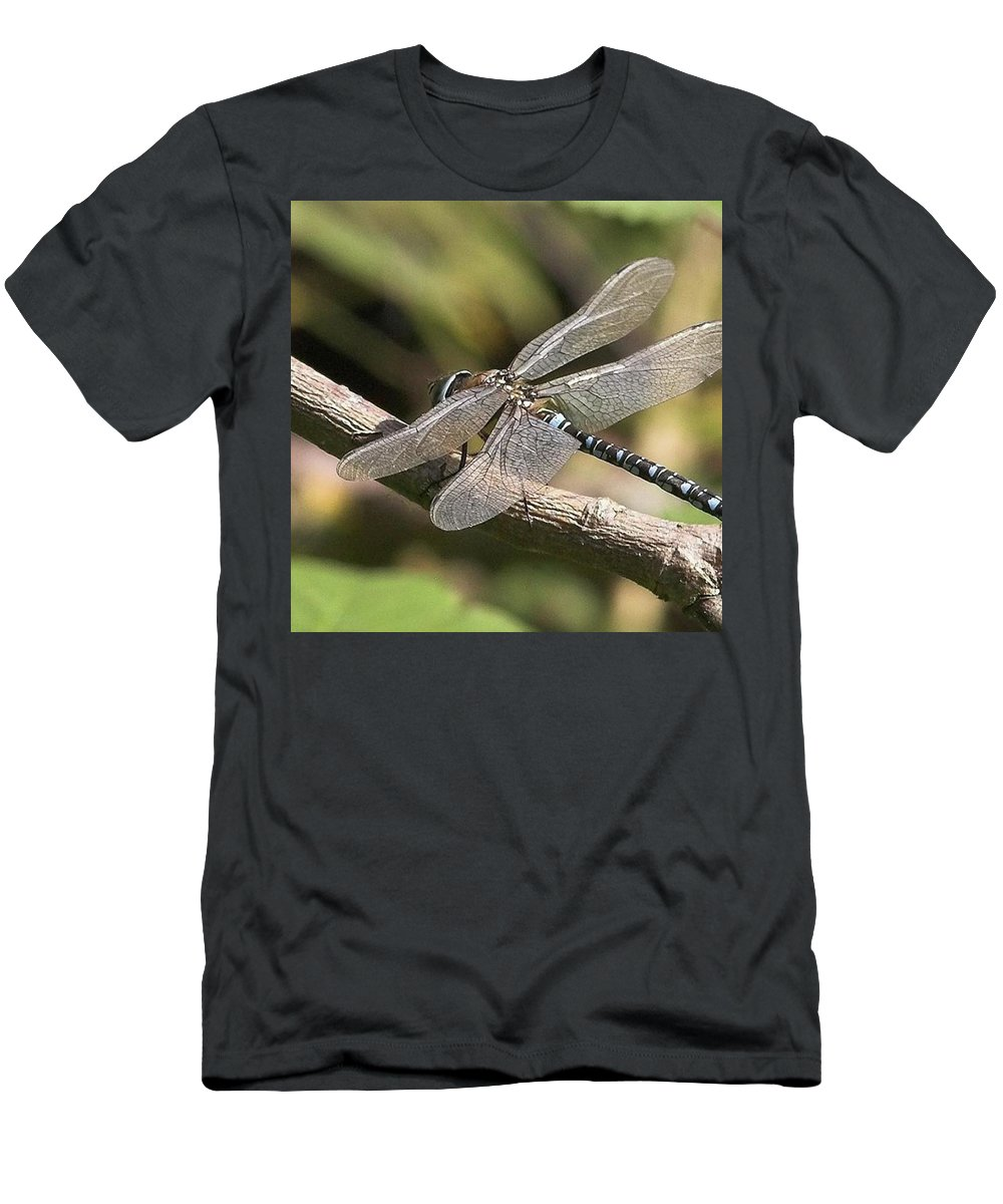 Dragonfly T-Shirt featuring the photograph Aeshna Juncea - Common Hawker taken At by John Edwards