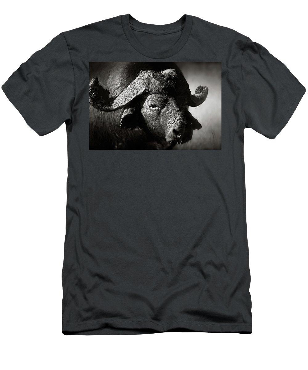 South Buffalo Photographs T-Shirts
