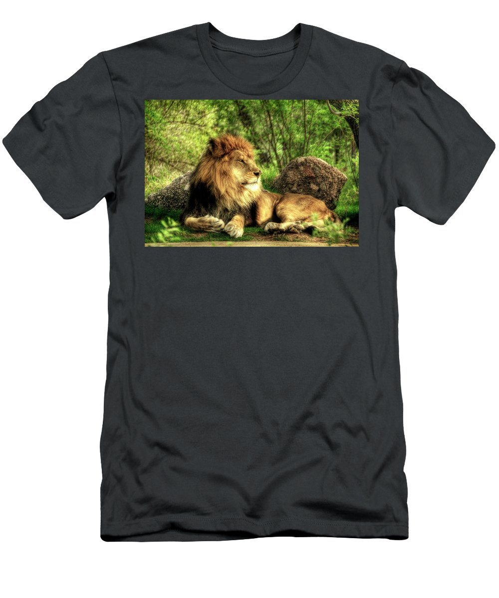 African Lion Men's T-Shirt (Athletic Fit) featuring the photograph African Lion by Saija Lehtonen