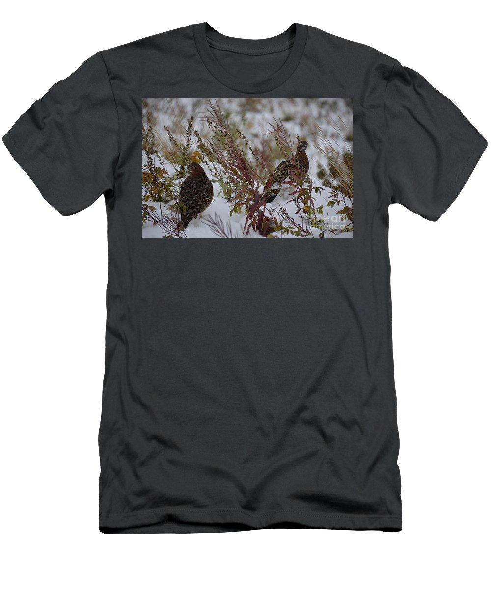Bird Men's T-Shirt (Athletic Fit) featuring the photograph Alaskan Ptarmigan by Daniel Schlosser