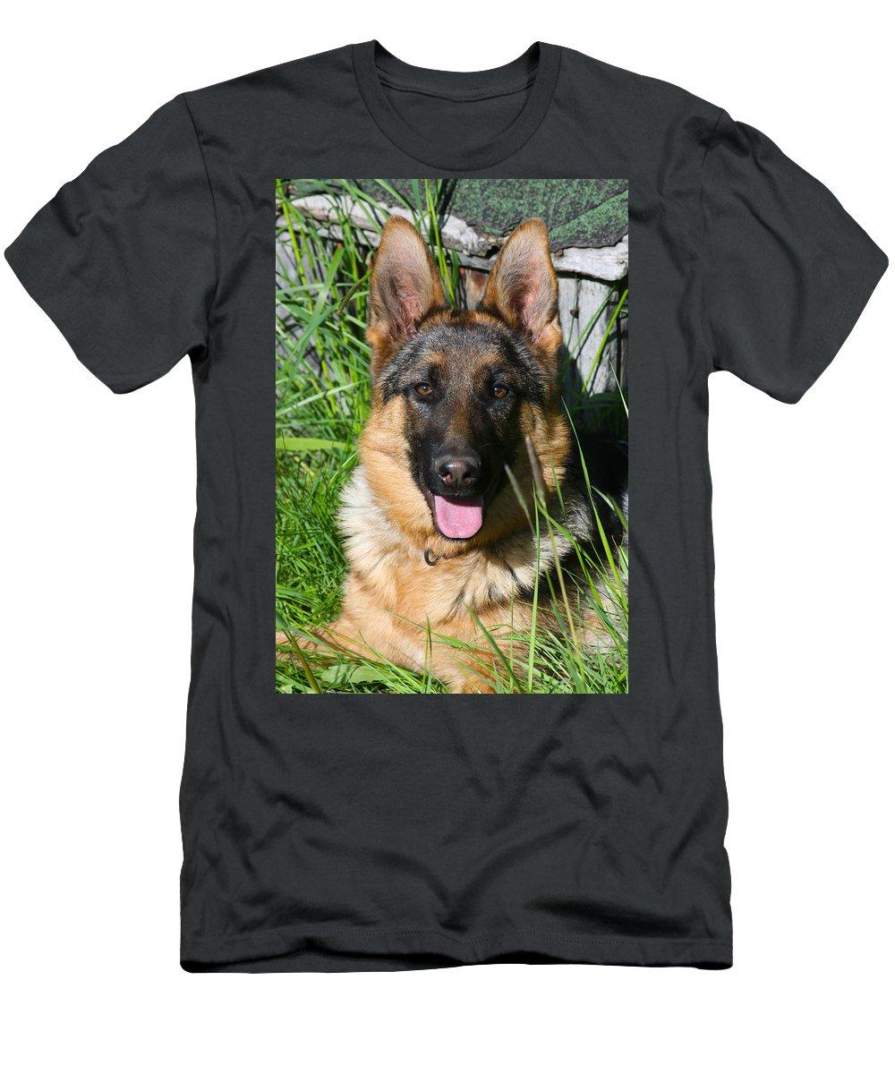 Pup Men's T-Shirt (Athletic Fit) featuring the photograph Alexis Von Nordstern Hof by Karon Melillo DeVega