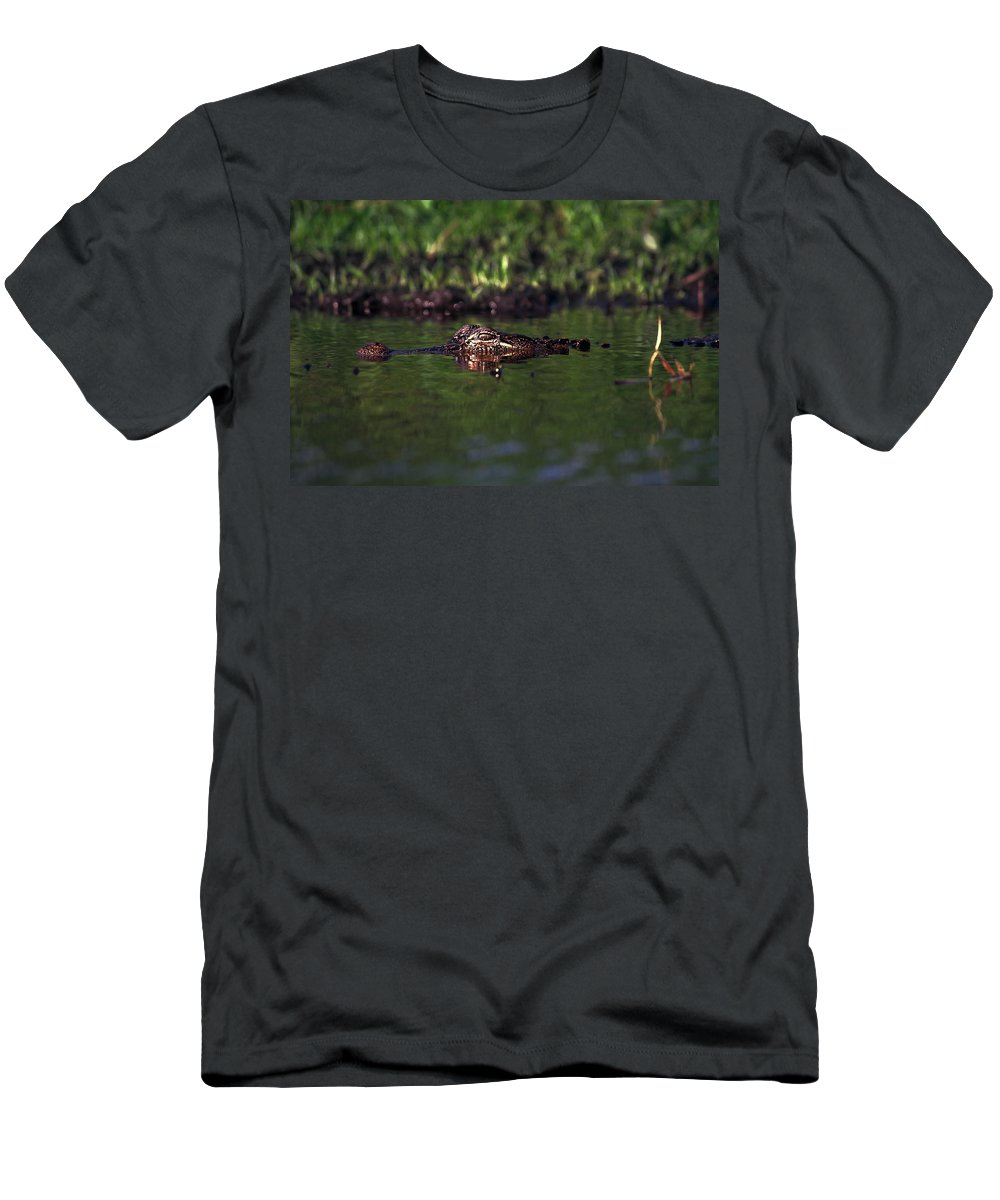 American Alligator Men's T-Shirt (Athletic Fit) featuring the photograph Alligator Eyes by Sally Weigand