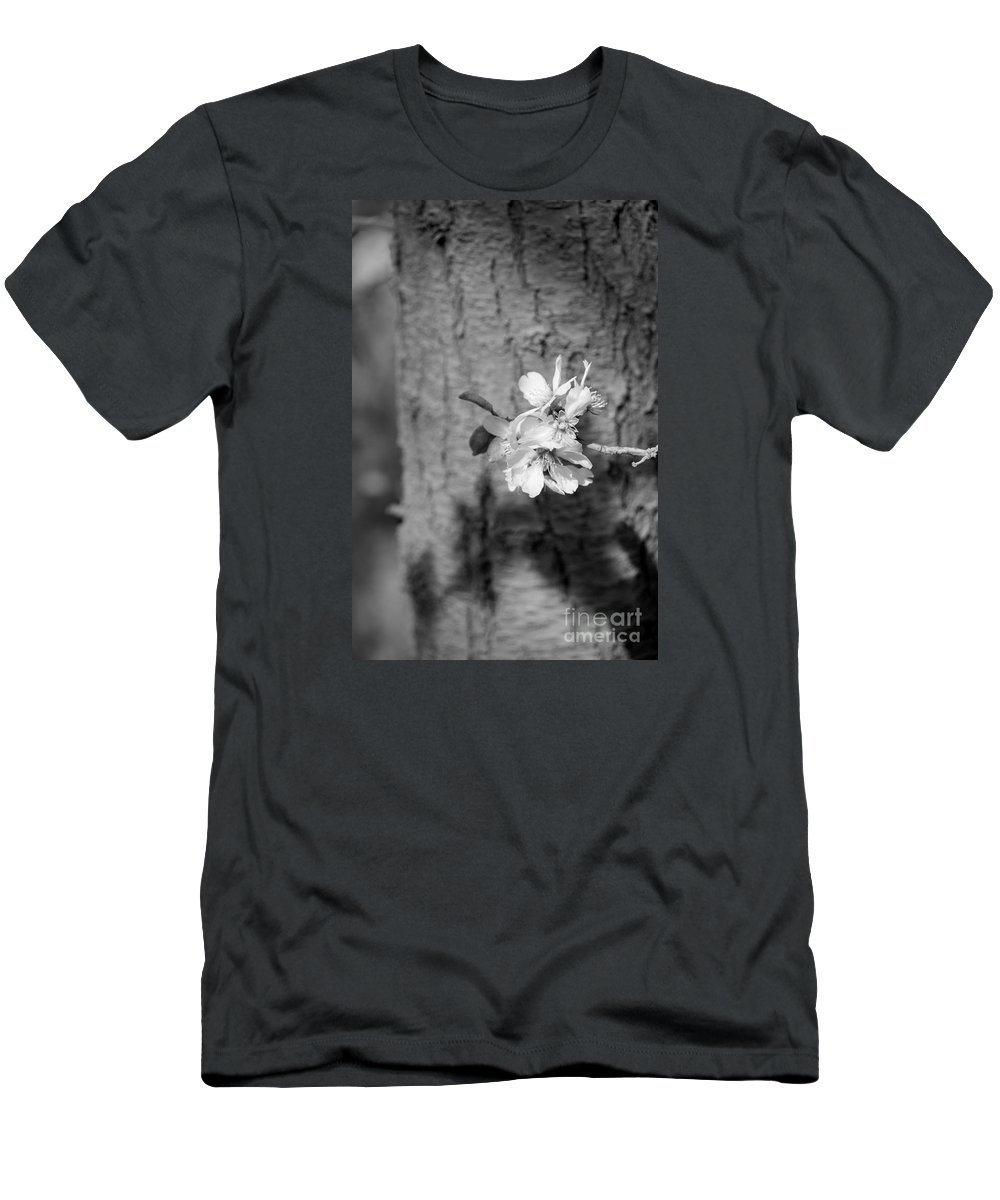 Almond Orchard Men's T-Shirt (Athletic Fit) featuring the photograph Almond Orchard 2 by Marta Robin Gaughen