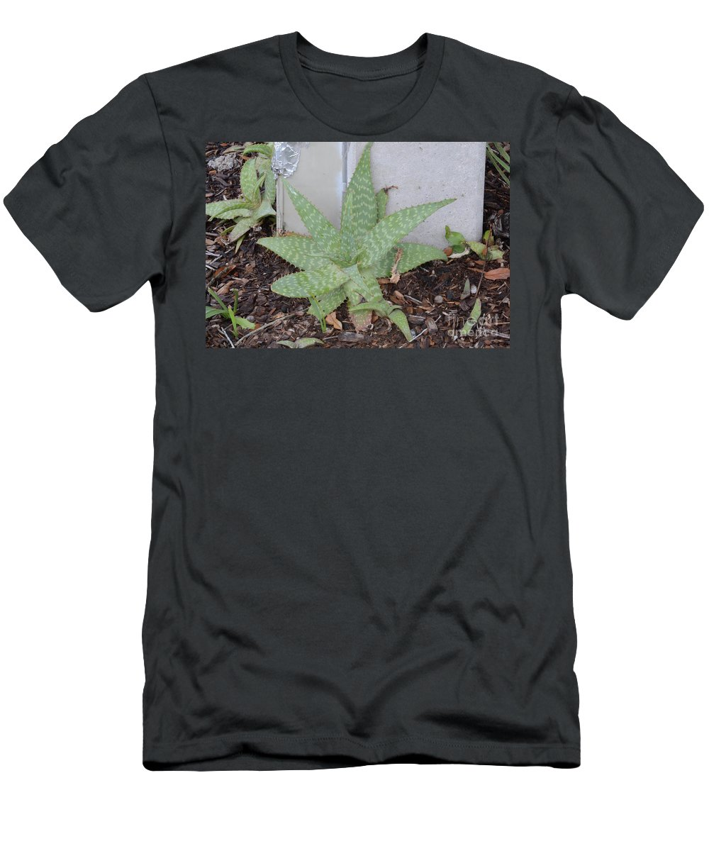 Plants Men's T-Shirt (Athletic Fit) featuring the photograph Aloe by Julie Rose