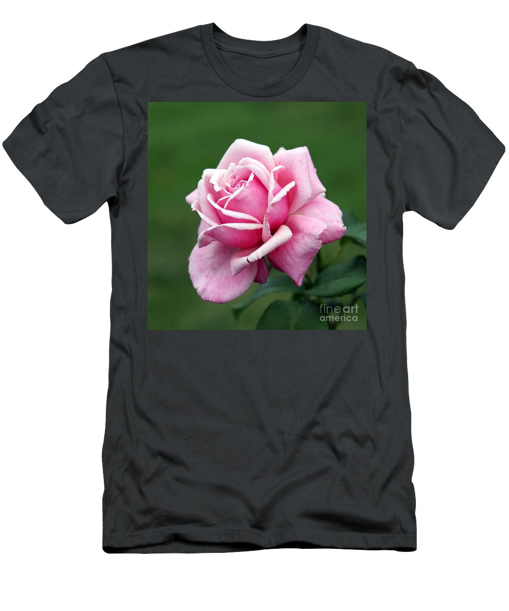 Rose T-Shirt featuring the photograph Alone Time by Amanda Barcon