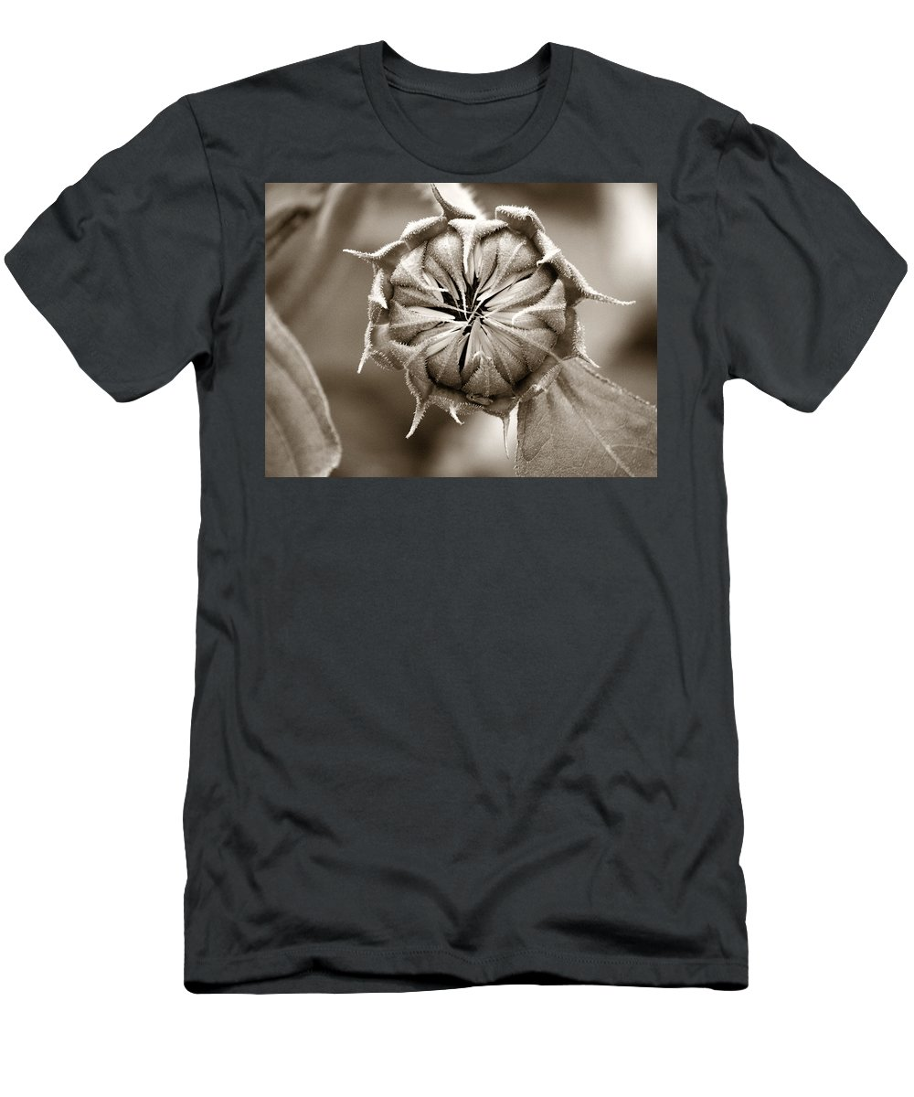 Sunflower Men's T-Shirt (Athletic Fit) featuring the photograph Amazing Sunflower Bud by Marilyn Hunt