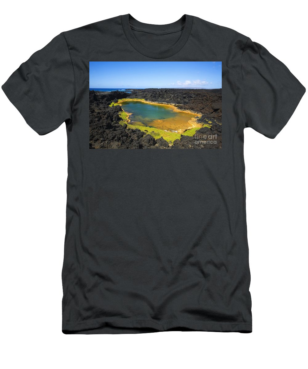 Ahihi Kinau Men's T-Shirt (Athletic Fit) featuring the photograph Anchialine Pond by Ron Dahlquist - Printscapes