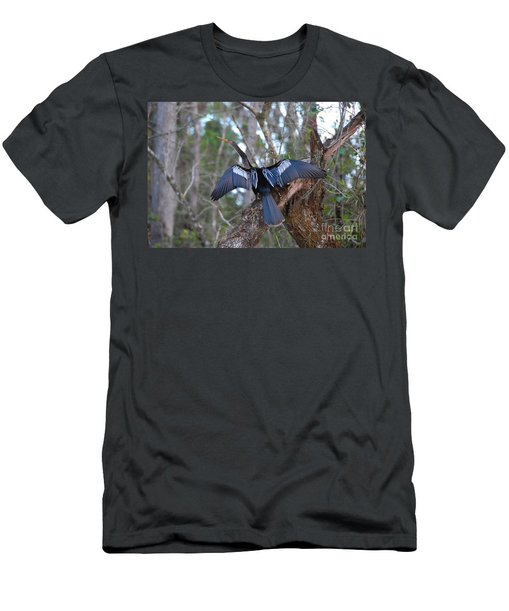 Anhinga Men's T-Shirt (Athletic Fit) featuring the photograph Anhinga by David Lee Thompson