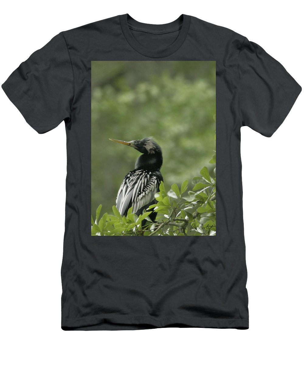 Anhinga Men's T-Shirt (Athletic Fit) featuring the photograph Anhinga by Phill Doherty