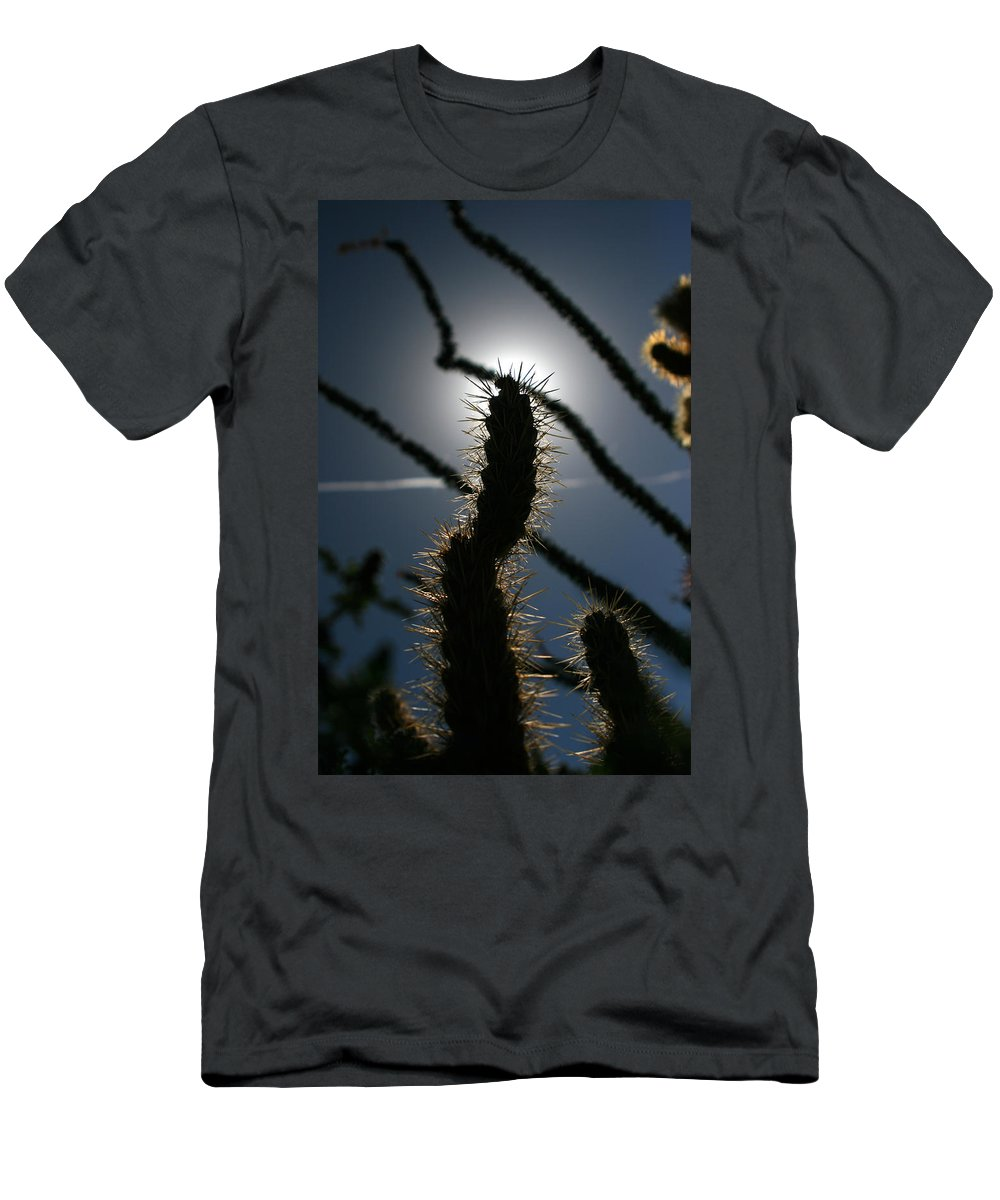 Cactus Men's T-Shirt (Athletic Fit) featuring the photograph Anza Borrego Cholla Sillouette by Chris Brannen