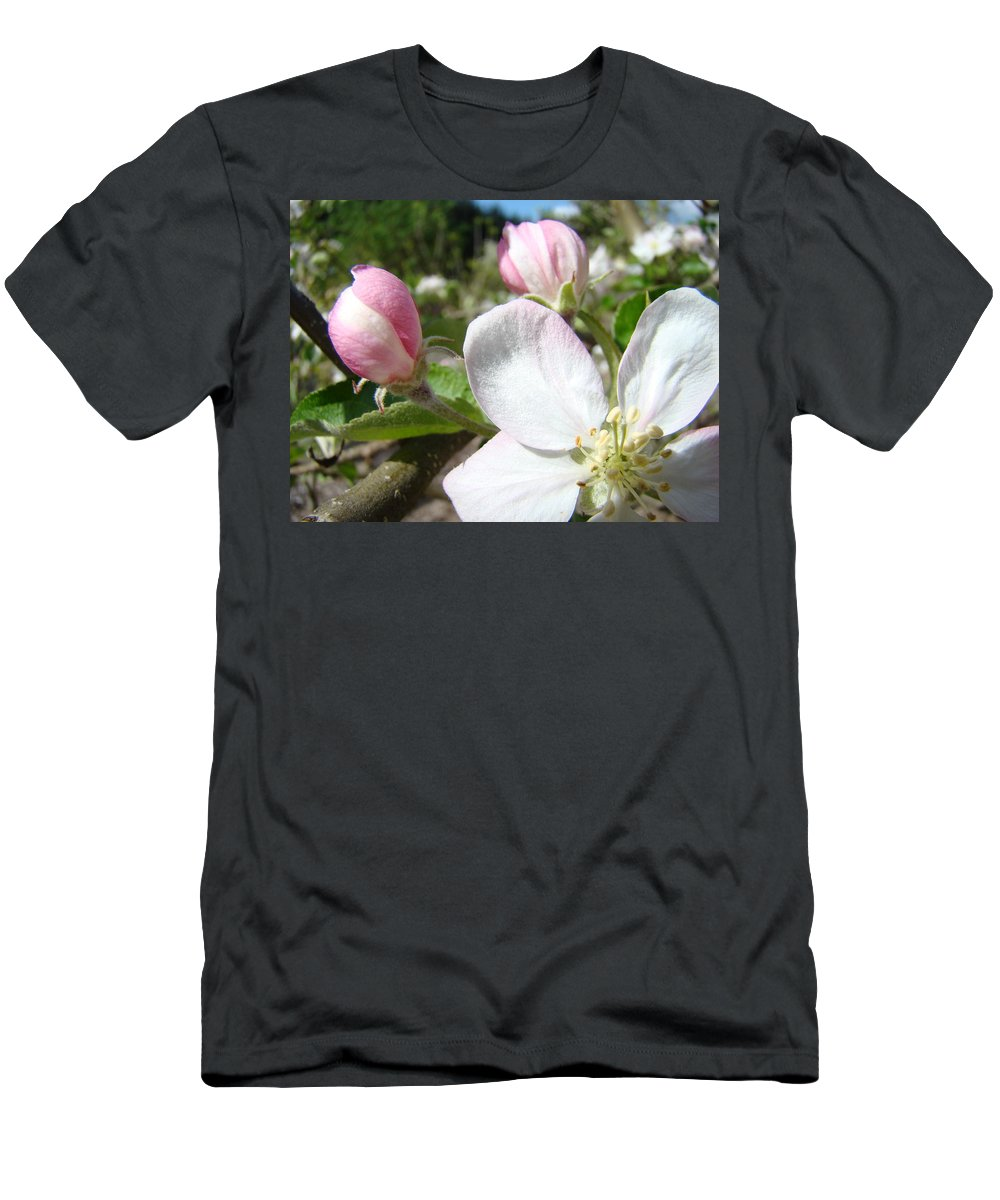 Apple Men's T-Shirt (Athletic Fit) featuring the photograph Apple Blossom Artwork Spring Apple Tree Baslee Troutman by Baslee Troutman