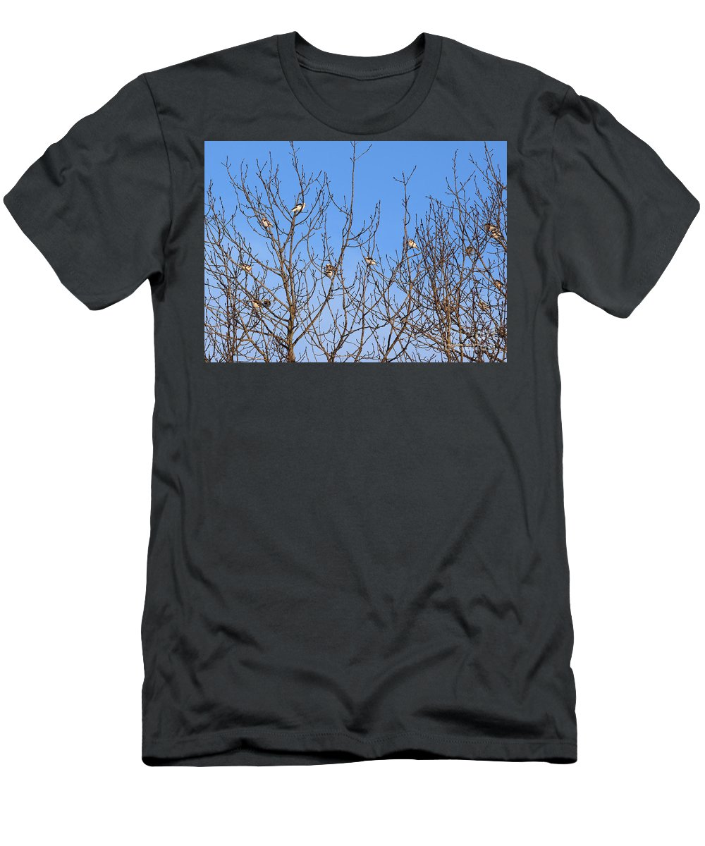 Arctic Bunting Men's T-Shirt (Athletic Fit) featuring the photograph Arctic Buntings by William Tasker