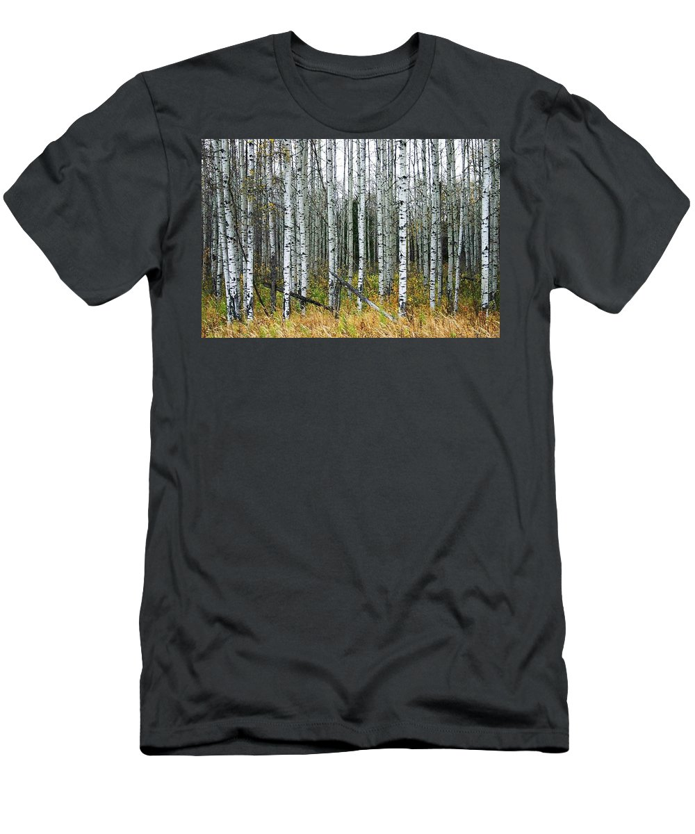 Aspens Men's T-Shirt (Athletic Fit) featuring the photograph Aspens by Nelson Strong