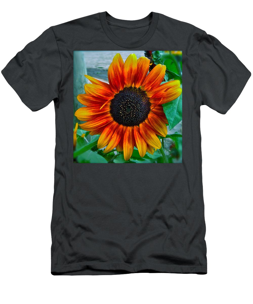 Sunflower Men's T-Shirt (Athletic Fit) featuring the photograph Autumn Blessing by Gwyn Newcombe