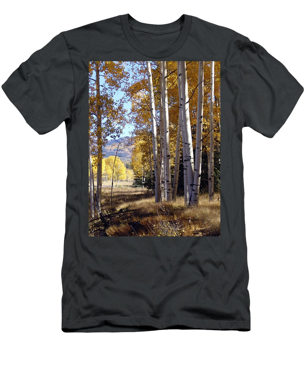 Autumn Men's T-Shirt (Athletic Fit) featuring the photograph Autumn Chama New Mexico by Kurt Van Wagner