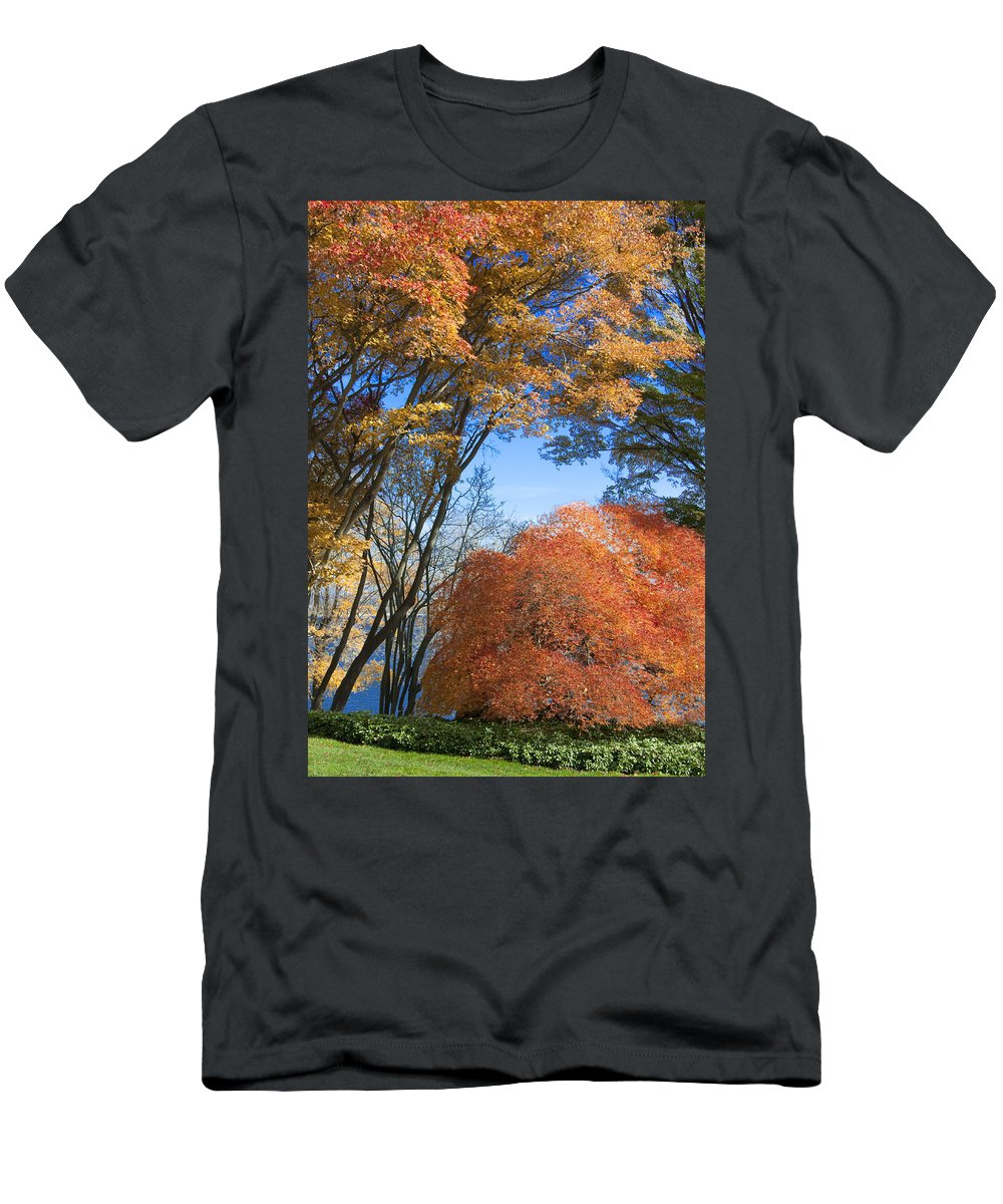 Autumn Men's T-Shirt (Athletic Fit) featuring the photograph Autumn Day by Steven Natanson