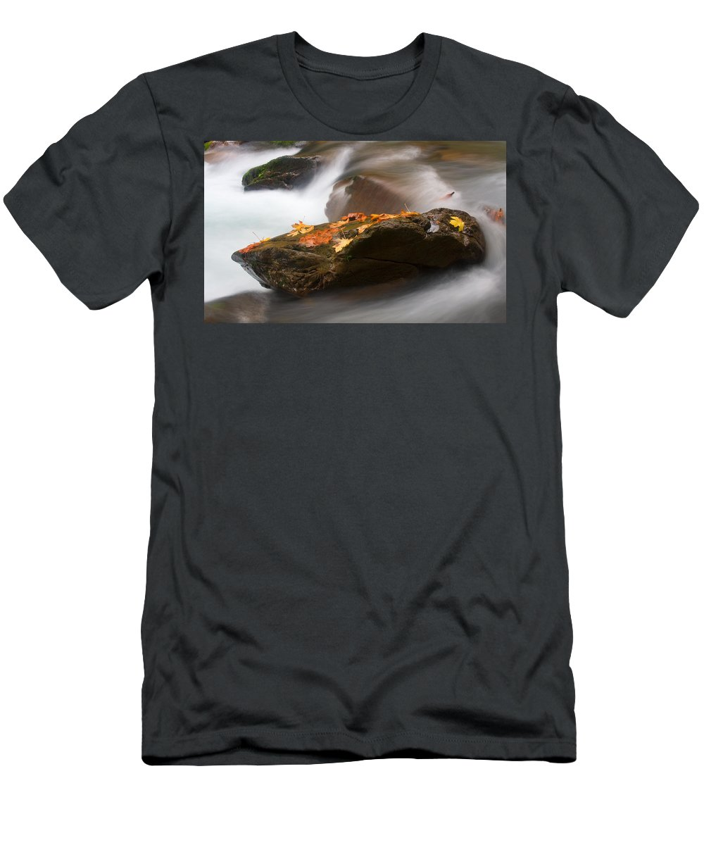 Leaves Men's T-Shirt (Athletic Fit) featuring the photograph Autumn Resting Place by Mike Dawson