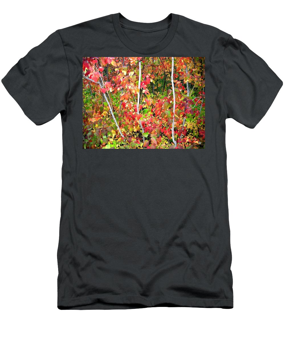 Autumn Men's T-Shirt (Athletic Fit) featuring the photograph Autumn Sanctuary by Will Borden