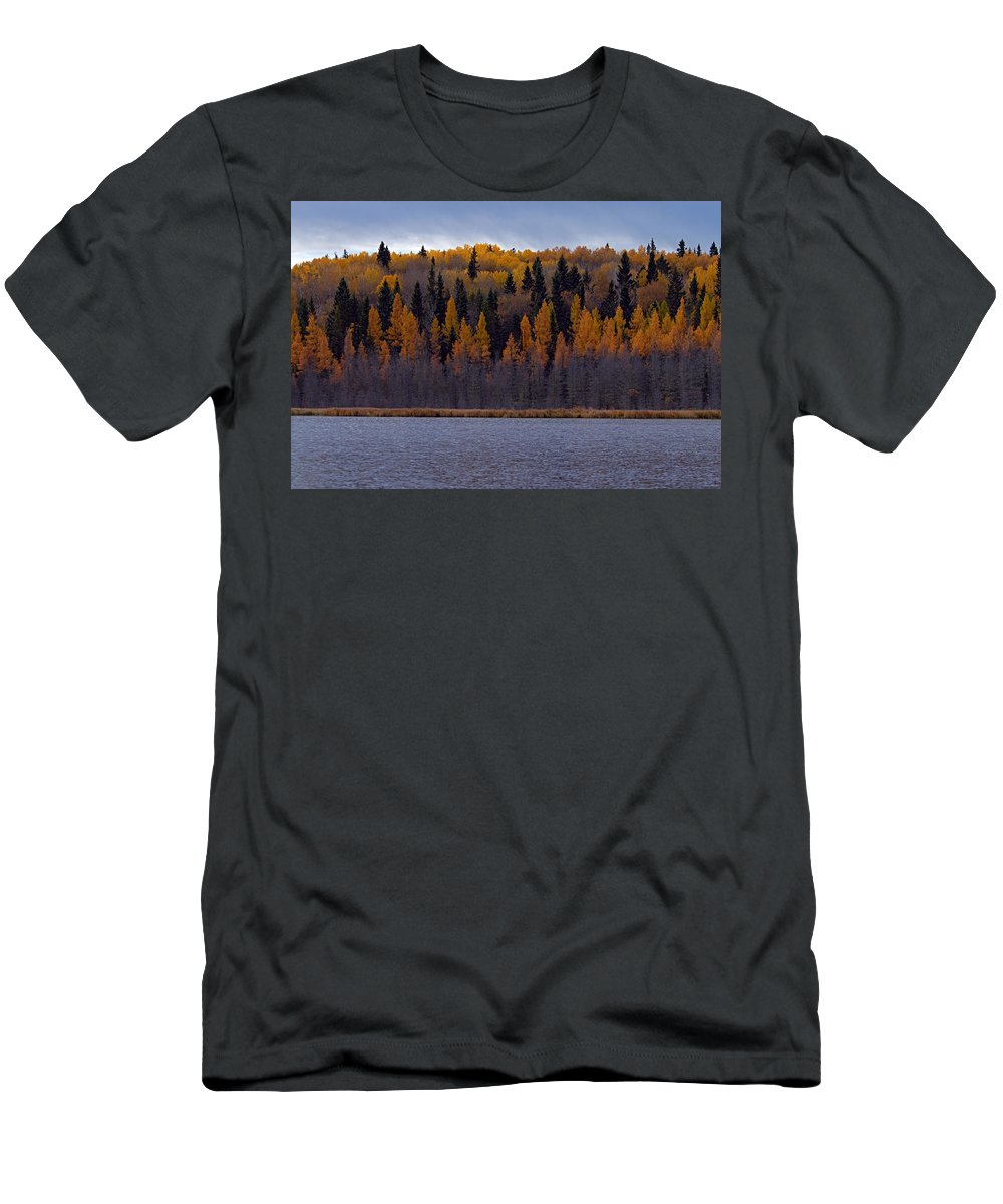 Prince Albert National Park Men's T-Shirt (Athletic Fit) featuring the photograph Autumn Tiers by Larry Ricker