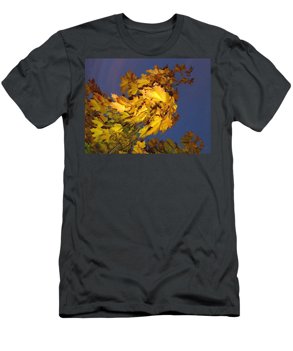 Maple Leaves Men's T-Shirt (Athletic Fit) featuring the photograph Autumn Winds by Will Borden