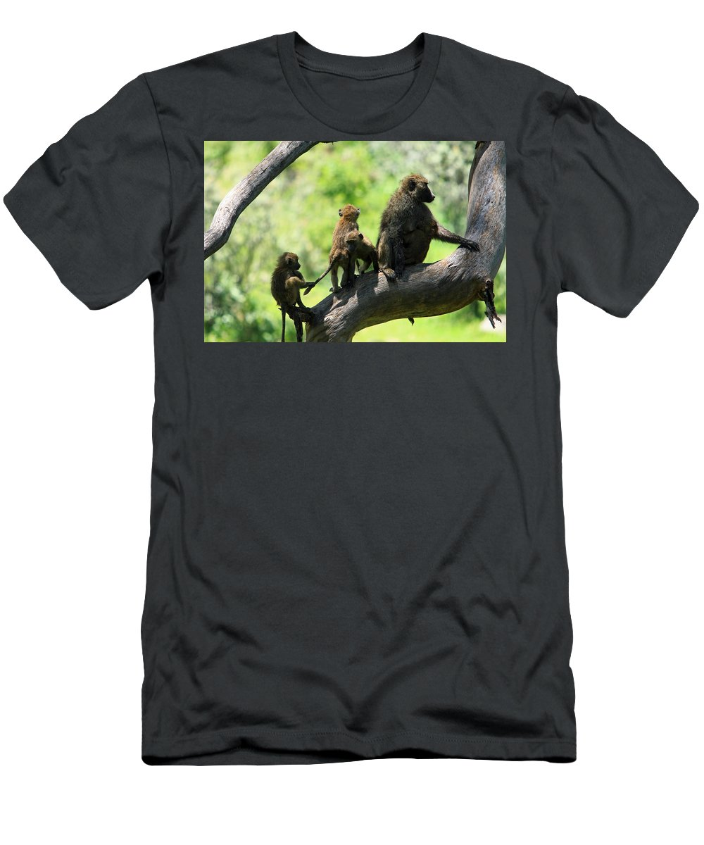 Baboon Men's T-Shirt (Athletic Fit) featuring the photograph Baboon Family by Aidan Moran