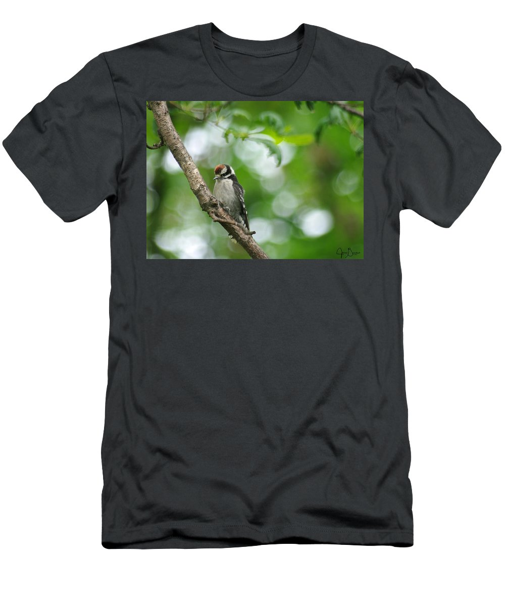 \jenny Gandert\ Baby Downy Woodpecker \downy Woodpecker\ Juvenile Bird Juvenile Woodpecker Oak Limb Feed Men's T-Shirt (Athletic Fit) featuring the photograph Baby Downy by Jenny Gandert