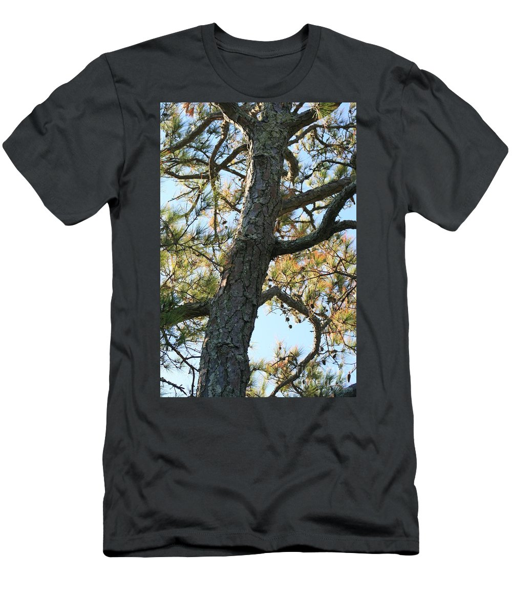 Tree Men's T-Shirt (Athletic Fit) featuring the photograph Bald Head Tree by Nadine Rippelmeyer