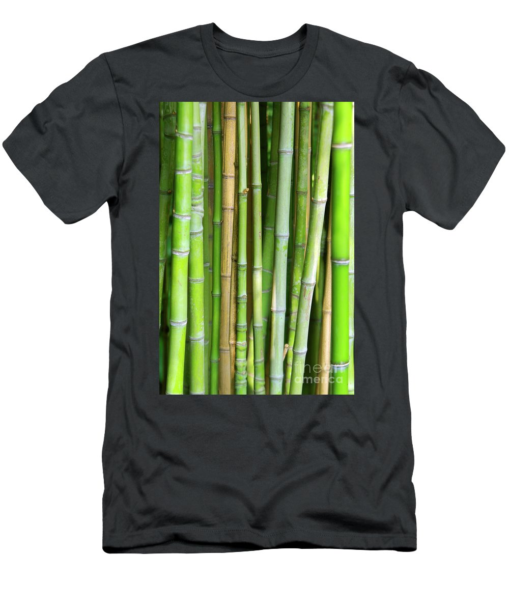 Asian Men's T-Shirt (Athletic Fit) featuring the photograph Bamboo Background by Carlos Caetano
